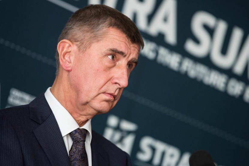 Babiš chce k euru nezáväzné referendum popri voľbách