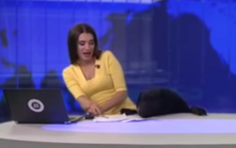 VIDEO Prekvapenie moderátorky: V štúdiu ju vydesil chlpatý návštevník