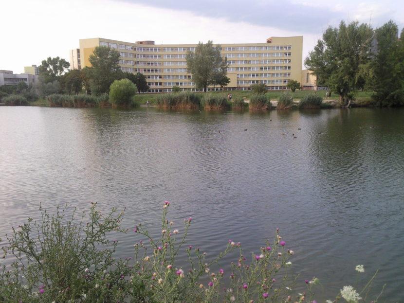 Ružinov hrozí Univerzitnej nemocnici v Bratislave pokutou viac ako 6-tisíc eur